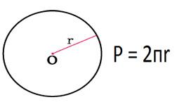 Периметр круга или длина окружности